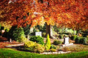 Cemetery in Fall with autumn trees and leaves